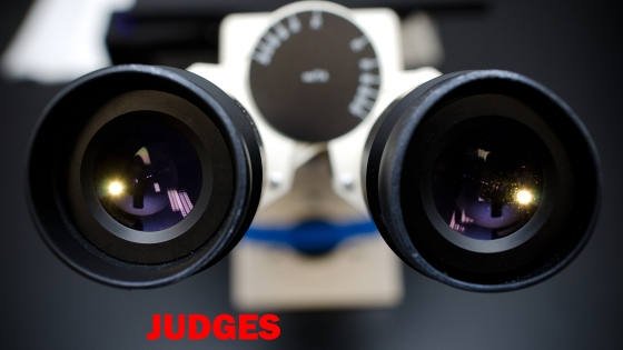 Judges_Image
