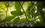 Screen Shot 2013-07-14 at 3.44.12 PM